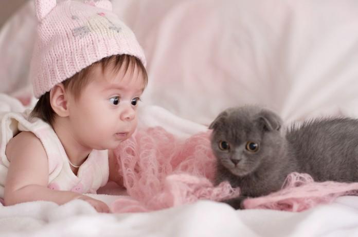 katzen und babys 8 tipps damit das zusammenleben klappt. Black Bedroom Furniture Sets. Home Design Ideas