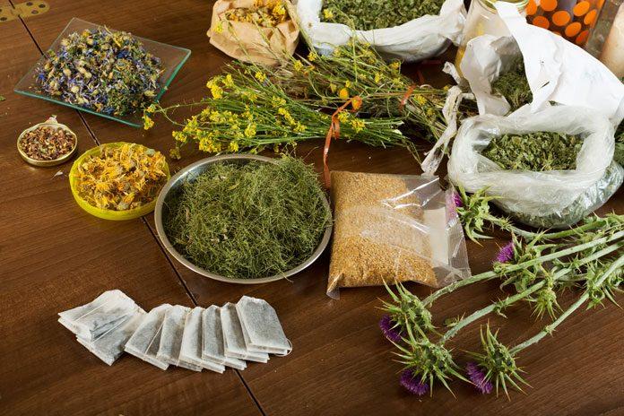 Schnupfen husten durchfall die besten hausmittel f r kinder for Mezclas de plantas medicinales