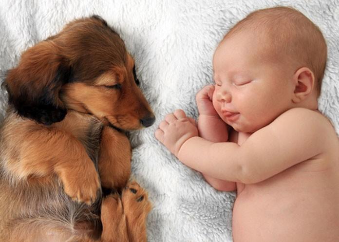 Schlafendes Kind mit Hund