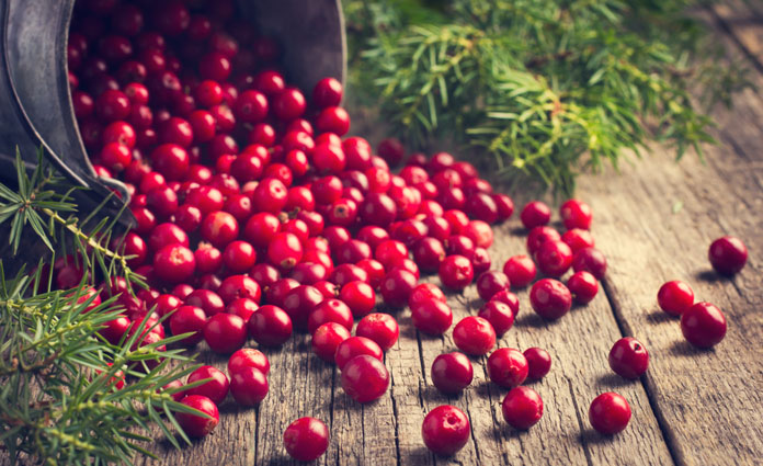 superfood-cranberry