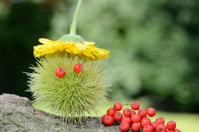 Herbst: Basteln mit Naturmaterialien für Kinder - welovefamily.at