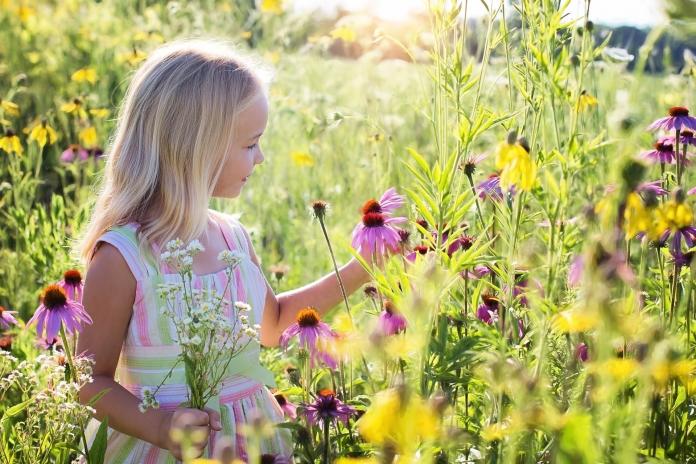 Ein kleines Mädchen steht in einer Blumenwiese