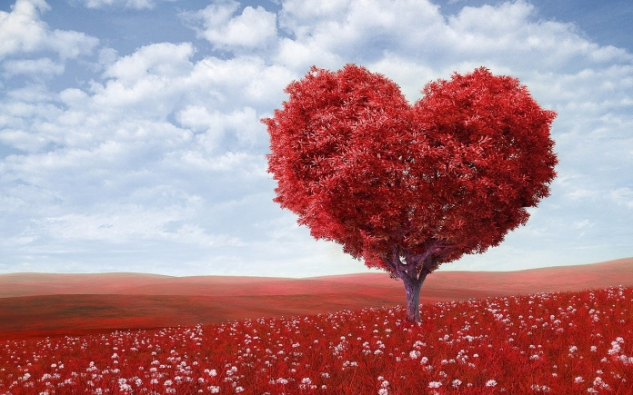 Herz aus Blättern